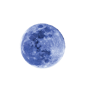 Blue Moon Video